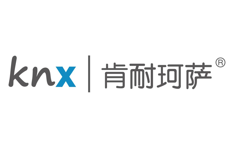 上海肯耐珂萨人力资源科技股份有限公司